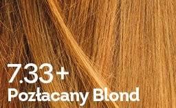 farba do włosów pozłacany blond Delicato +