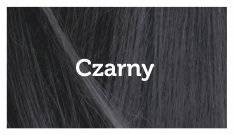 Spray Touch-up Czarny